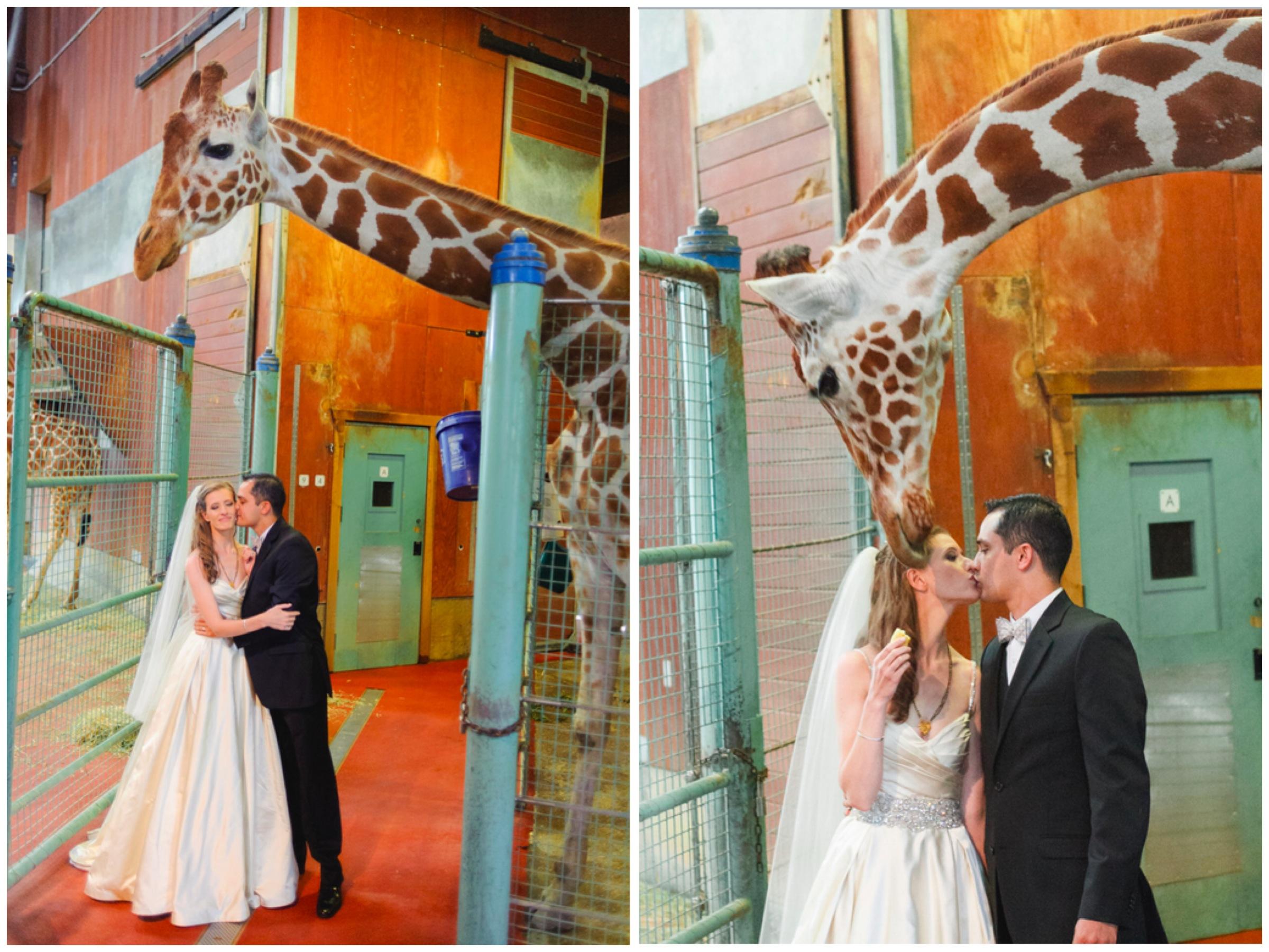 san francisco zoo - bridal makeup - 7.jpg