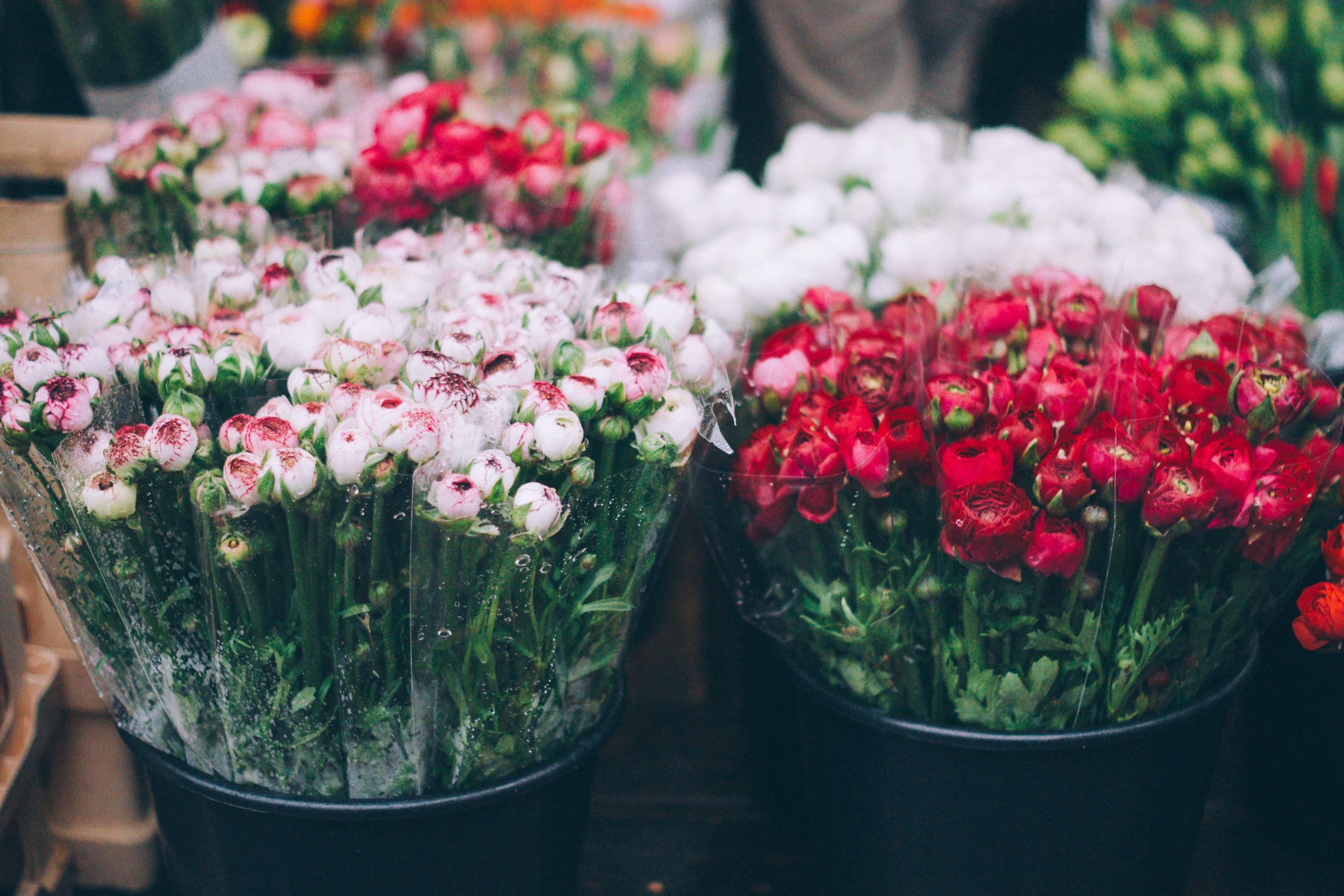 Orders & Bulk Flowers -
