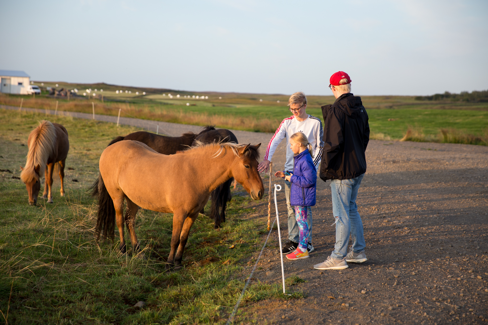 Iceland Day 1-19.jpg