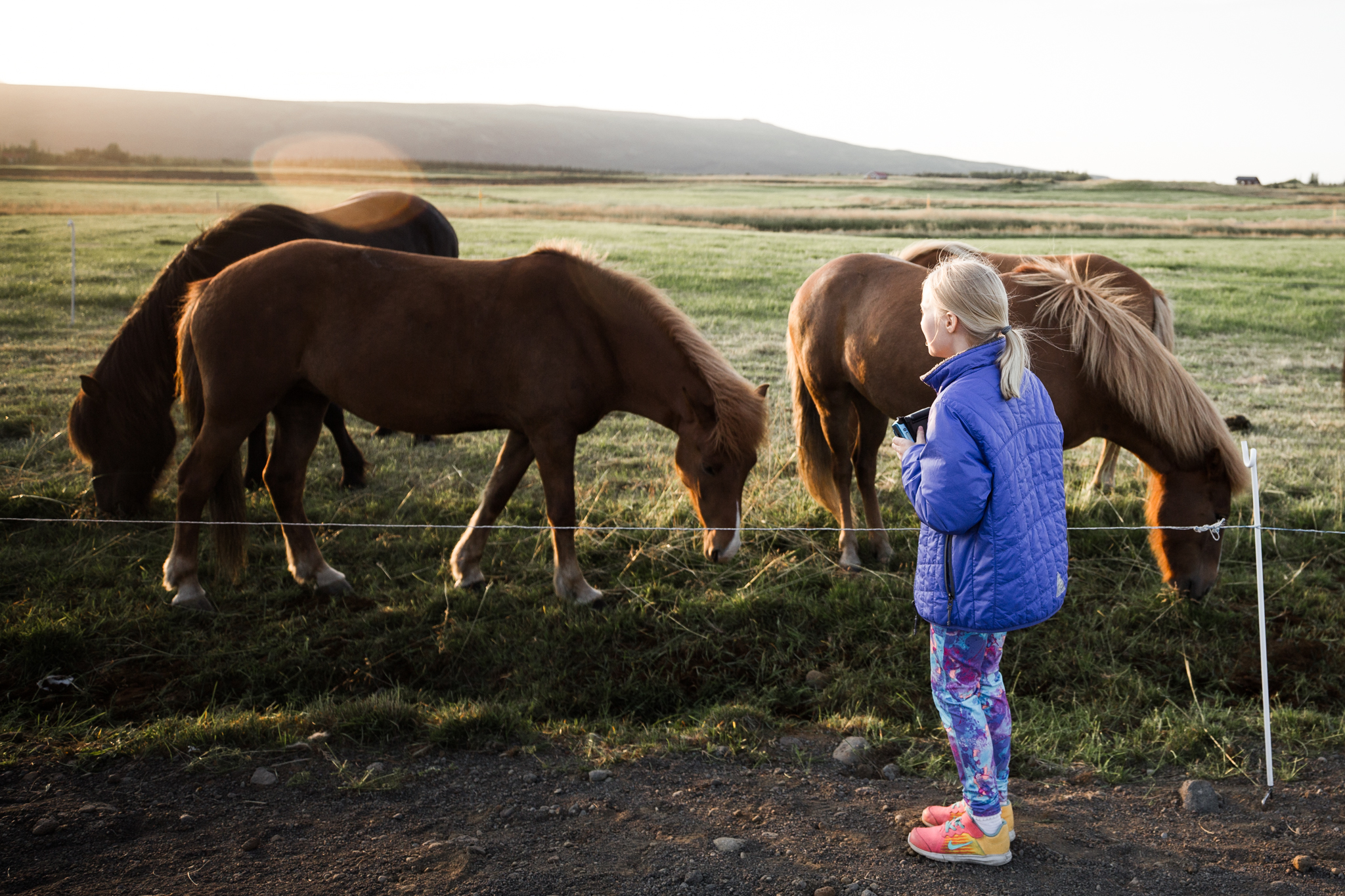 Iceland Day 1-17.jpg