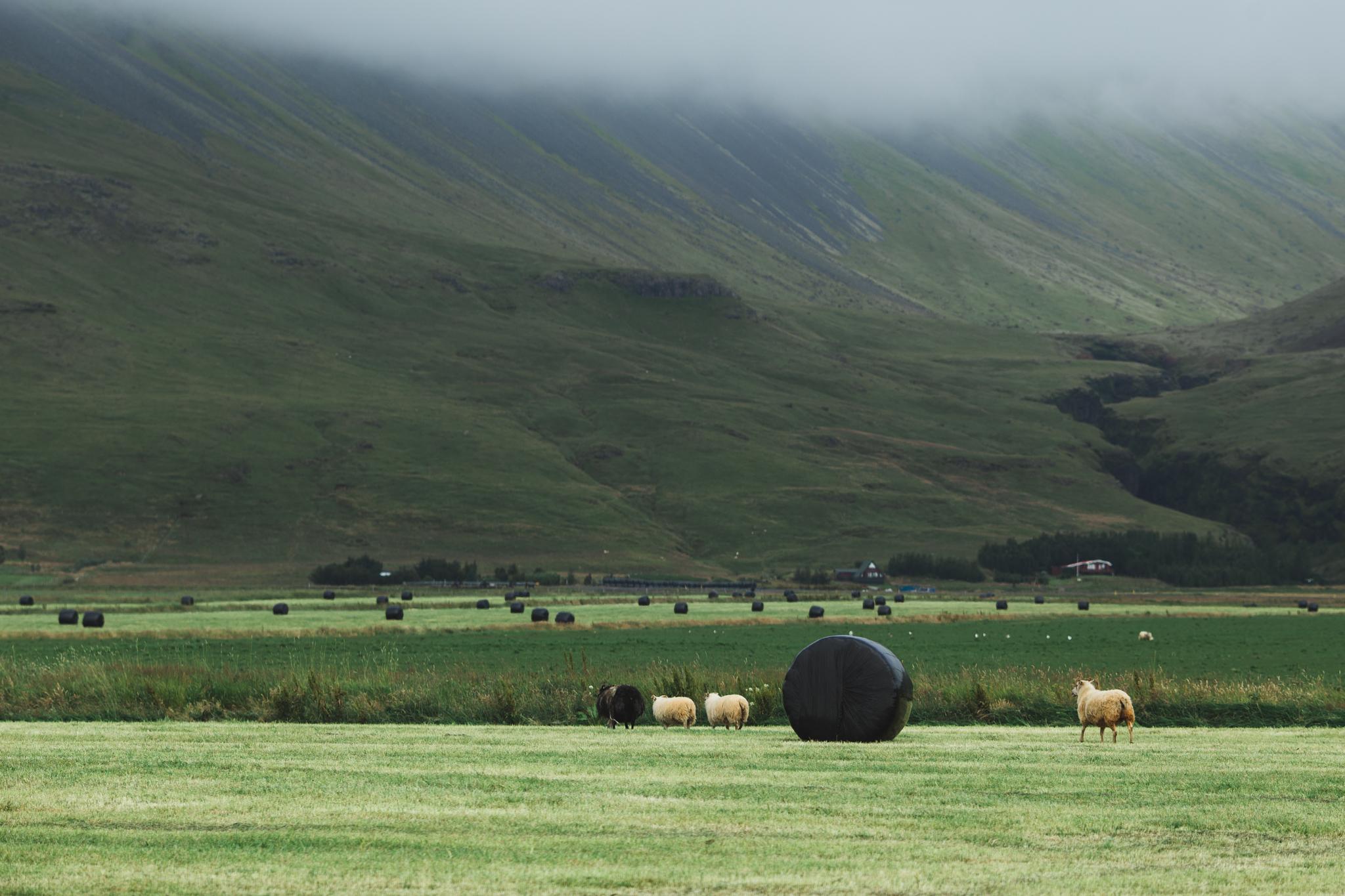 Iceland Day 2-3.jpg