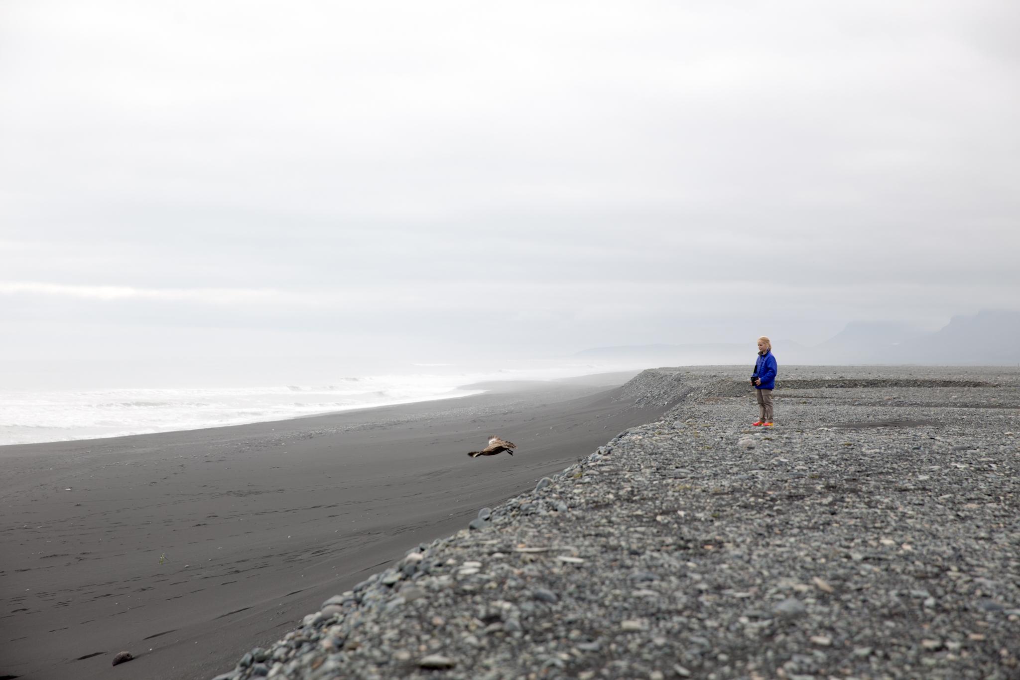 Iceland Day 3 part 2 1.2-2.jpg