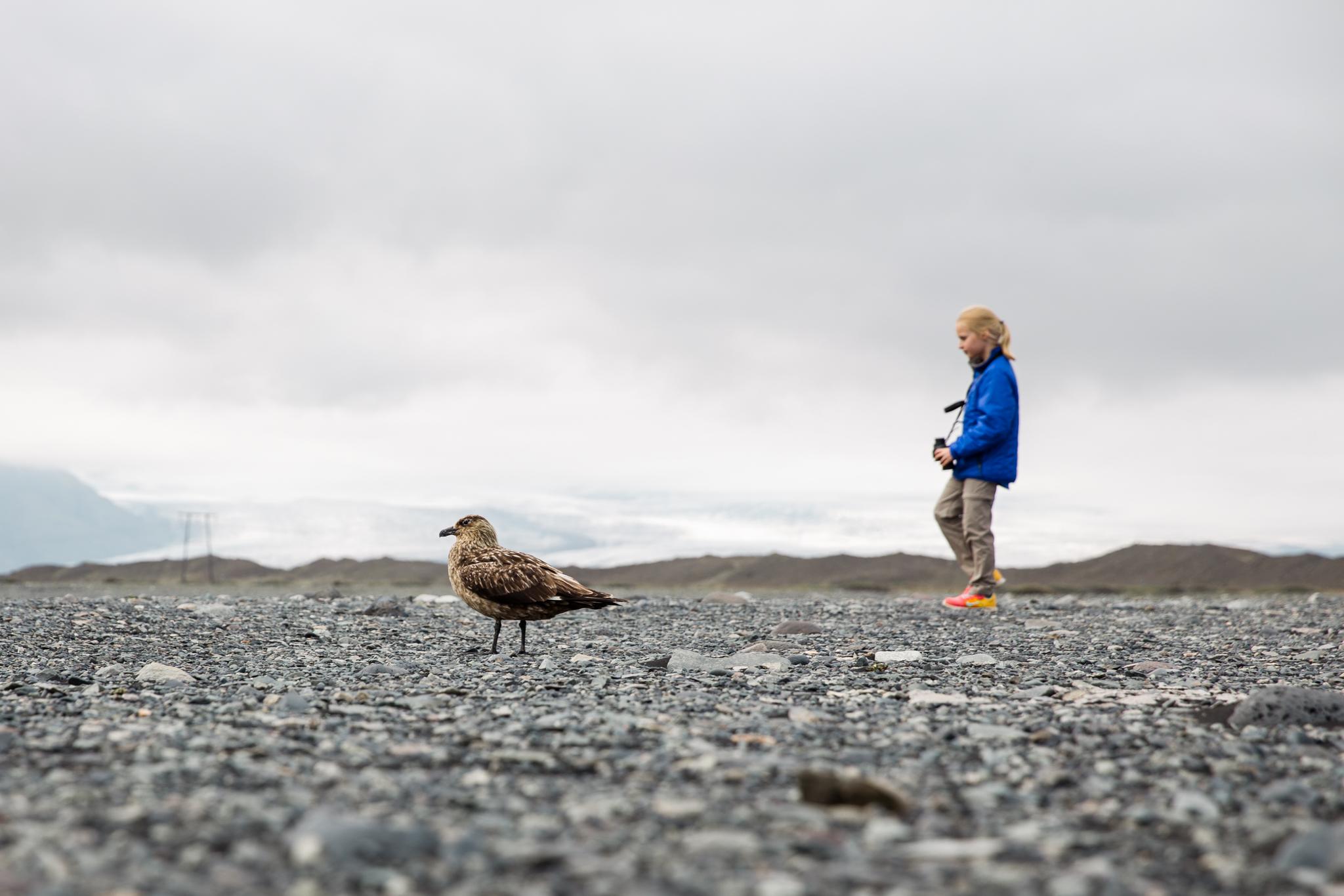 Iceland Day 3 part 2-9.jpg