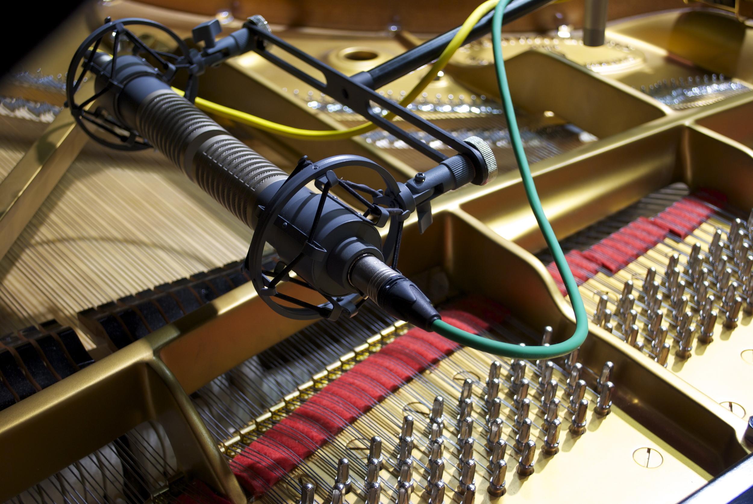 SE-Electronics-R1Blumlein2.jpg