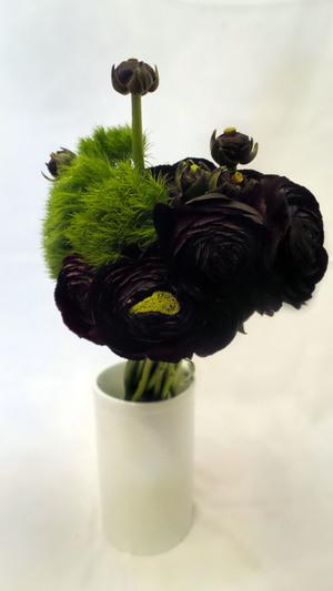 black+and+greenedit2.jpg