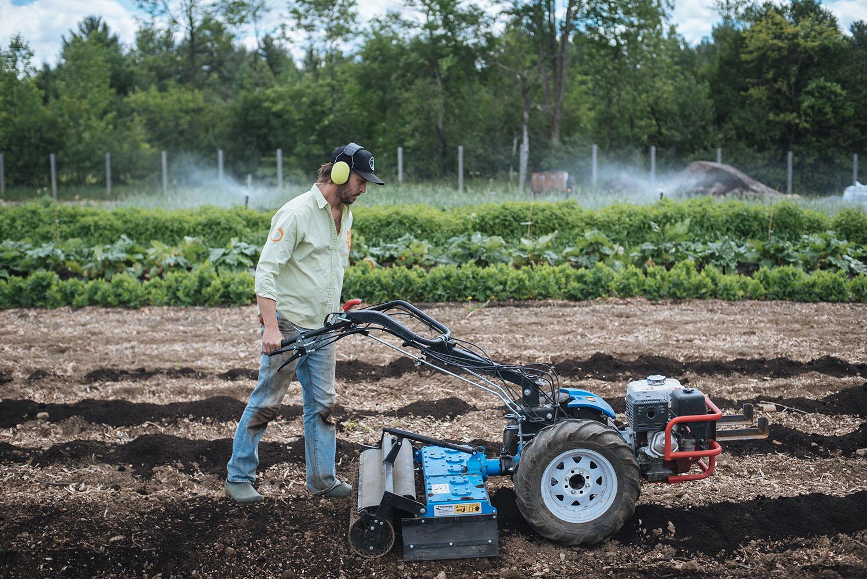 Two-Wheel Tractor — The Market Gardener