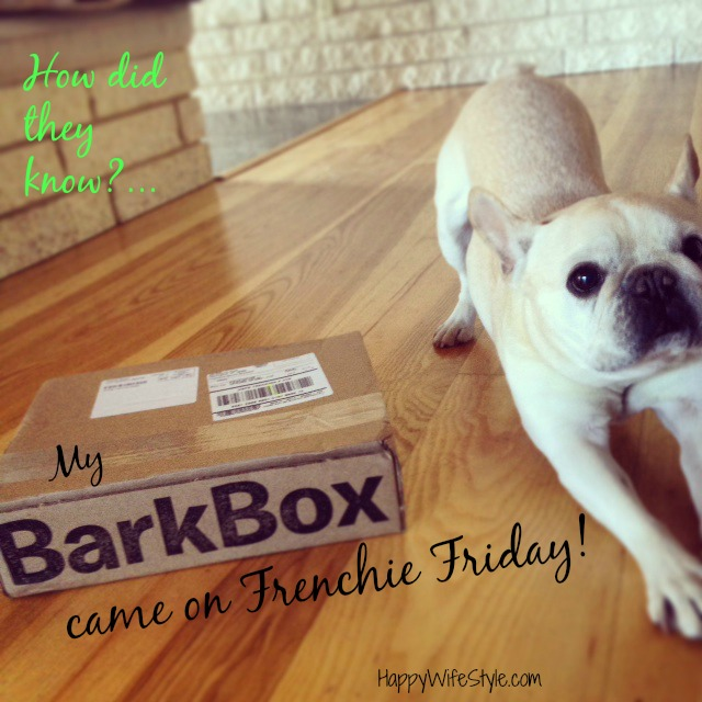 barkbox-frenchie-friday