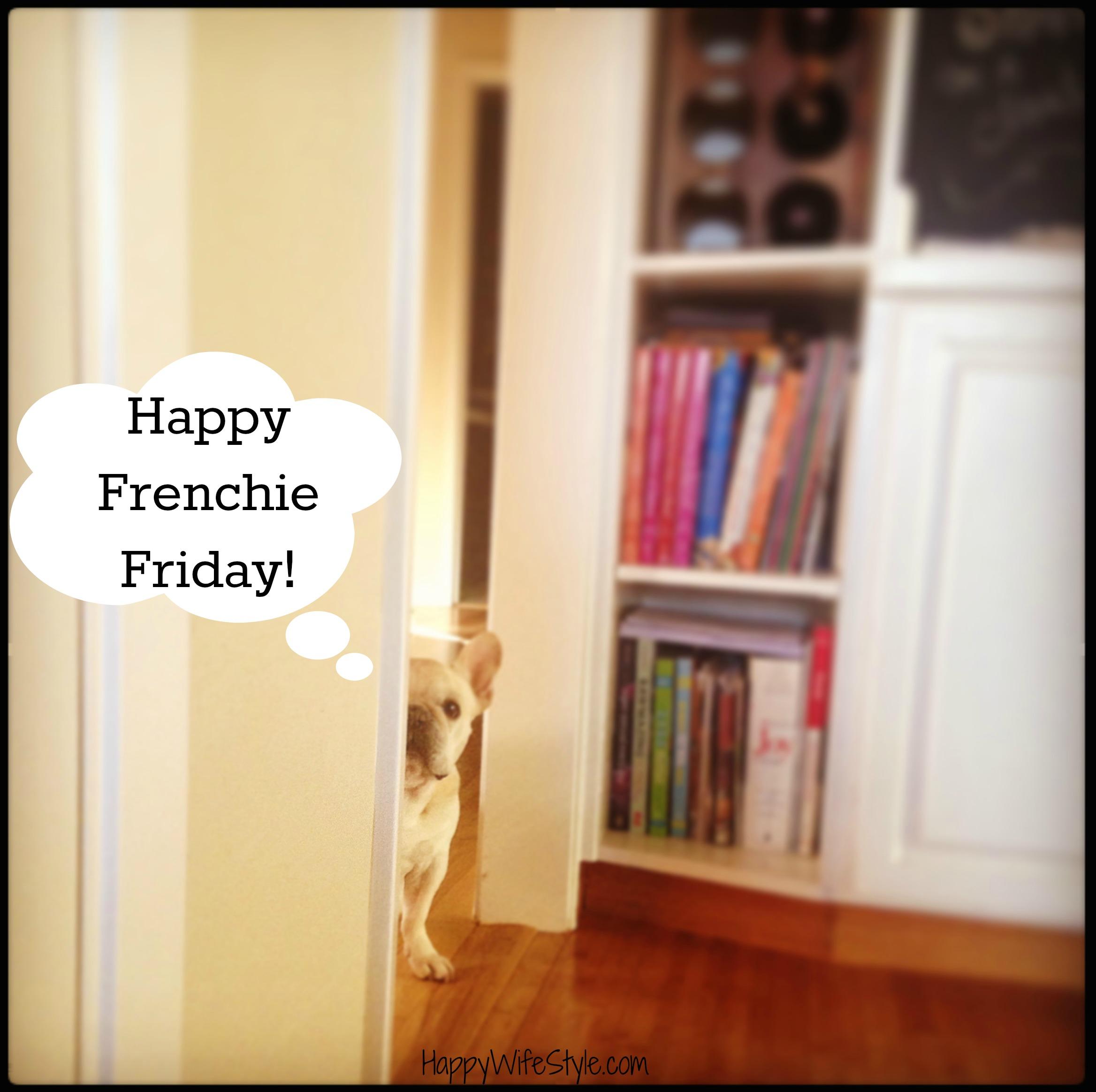 frenchie-friday