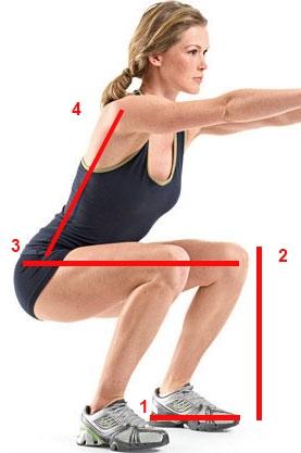 squat-diagram