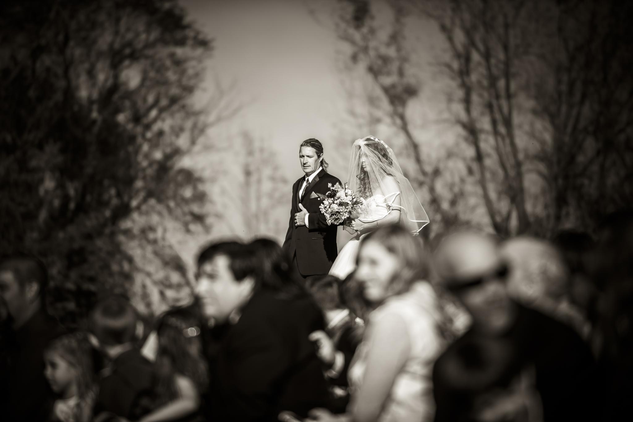 JessMatt-Online-Ceremony-37.jpg