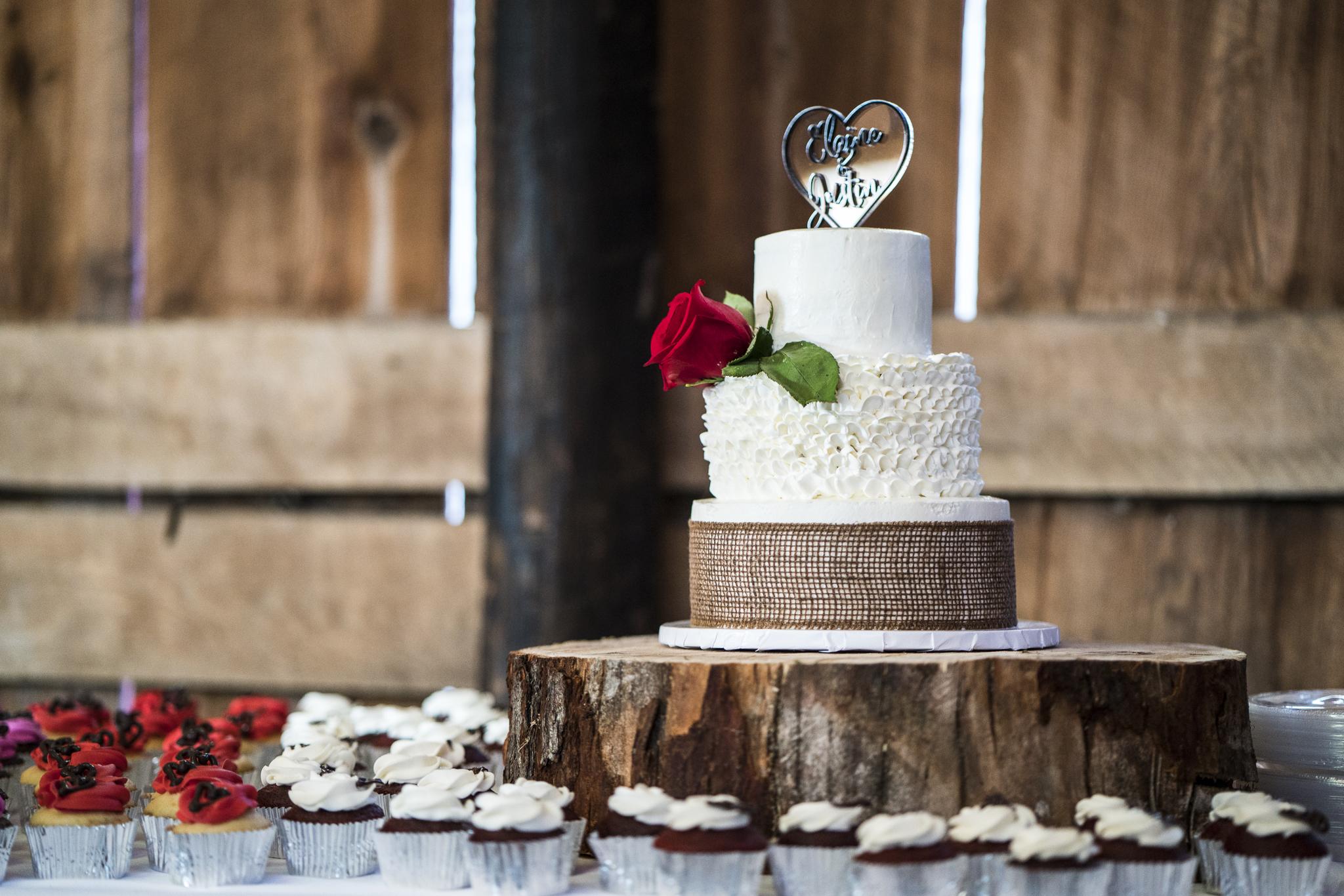 Elaine-Justin-Wedding-Online-Reception-22.jpg