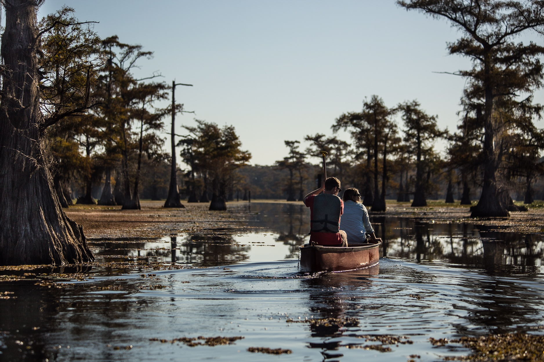 Caddo Lake is the largest natural lake in the southern United States. Photo by Lizzie Jespersen