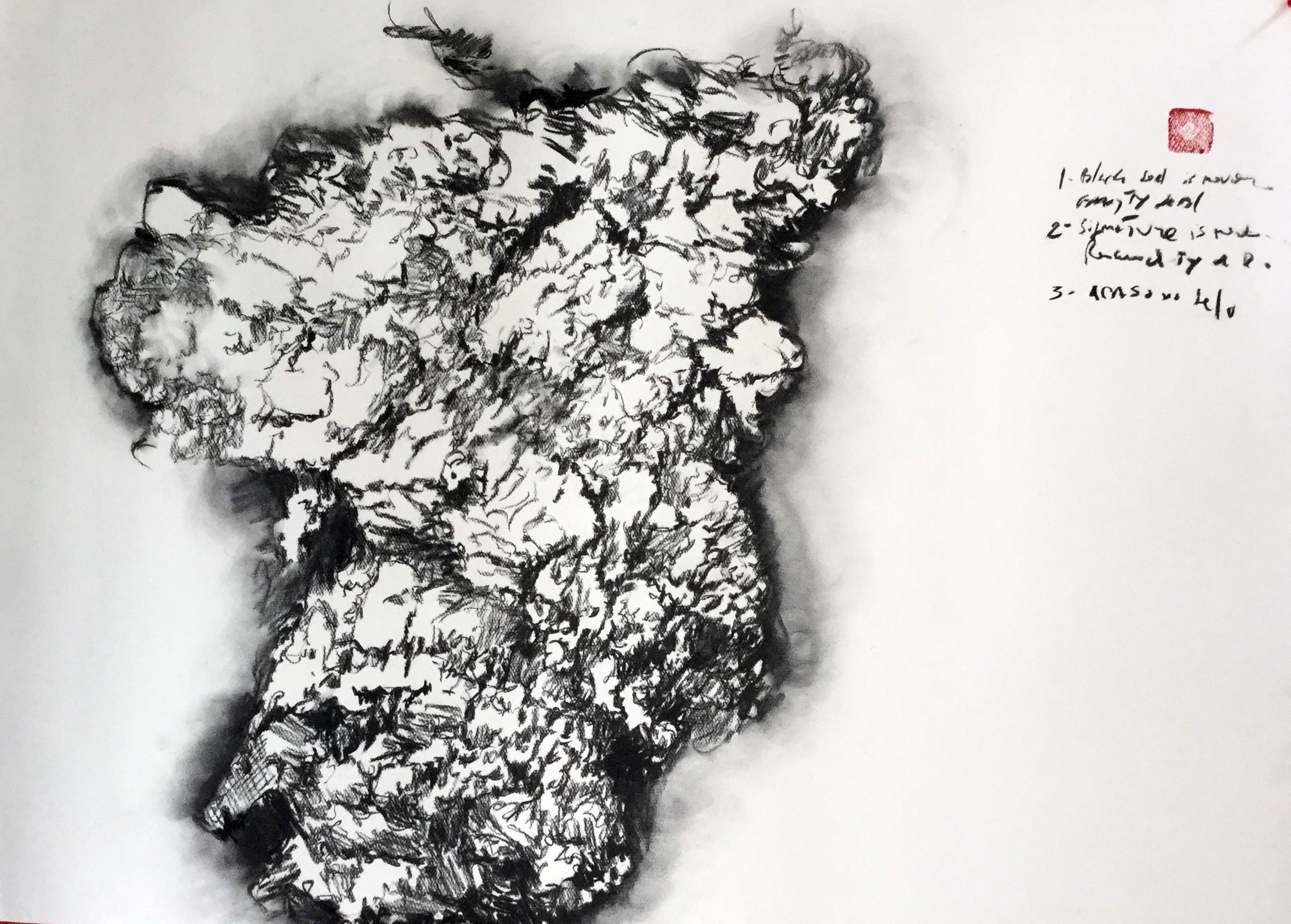Tragedy (detail) - charcoal on 400 g paper -100cmX80cm - China Residence Charcoal Home