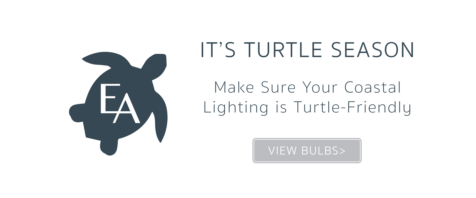 TurtleBulb_Slider.jpg