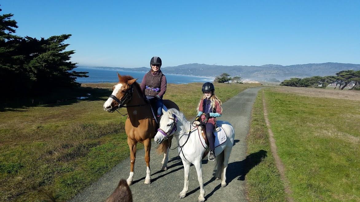 ponies at beach 2 .jpg
