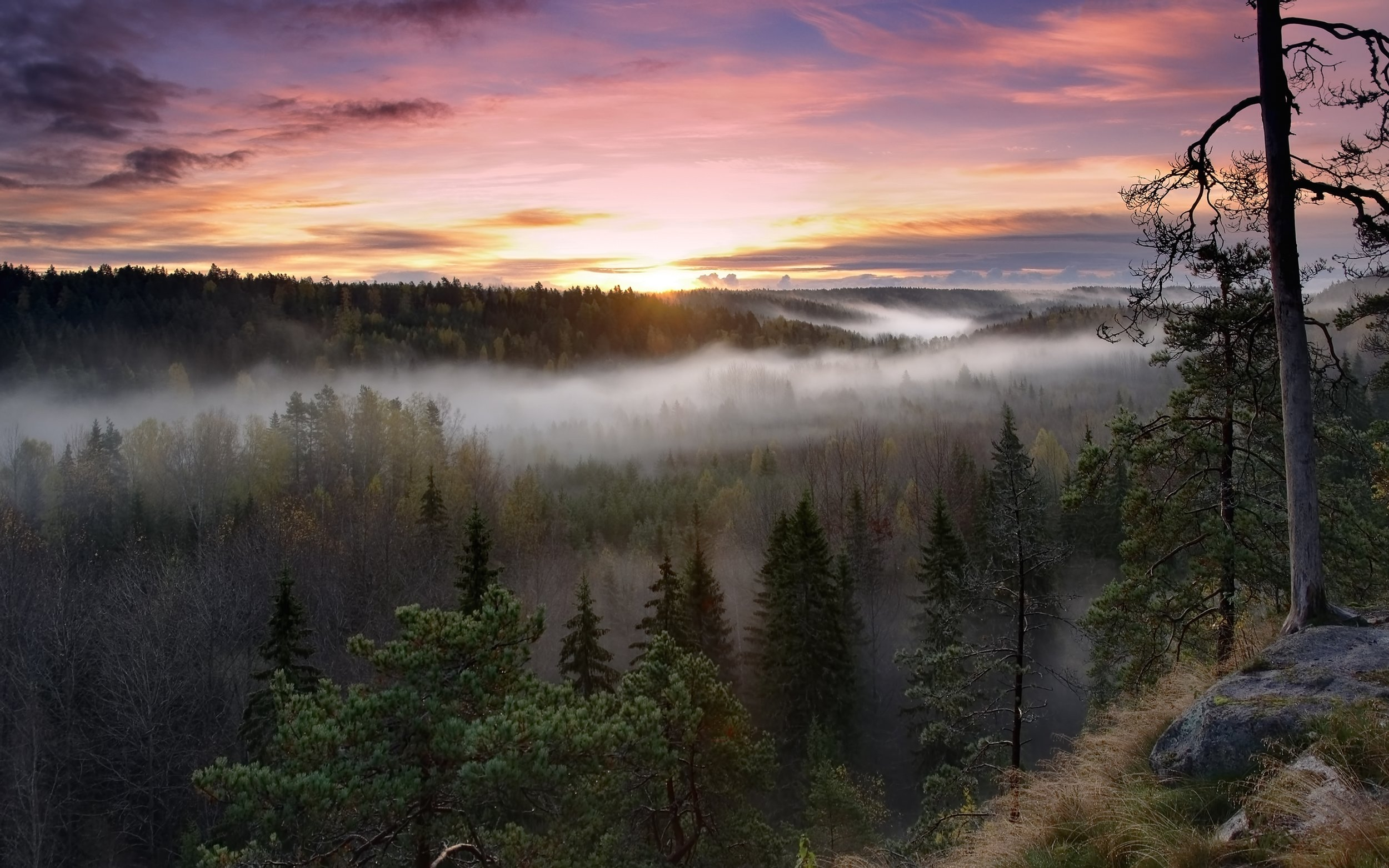 Sibelius' Finland