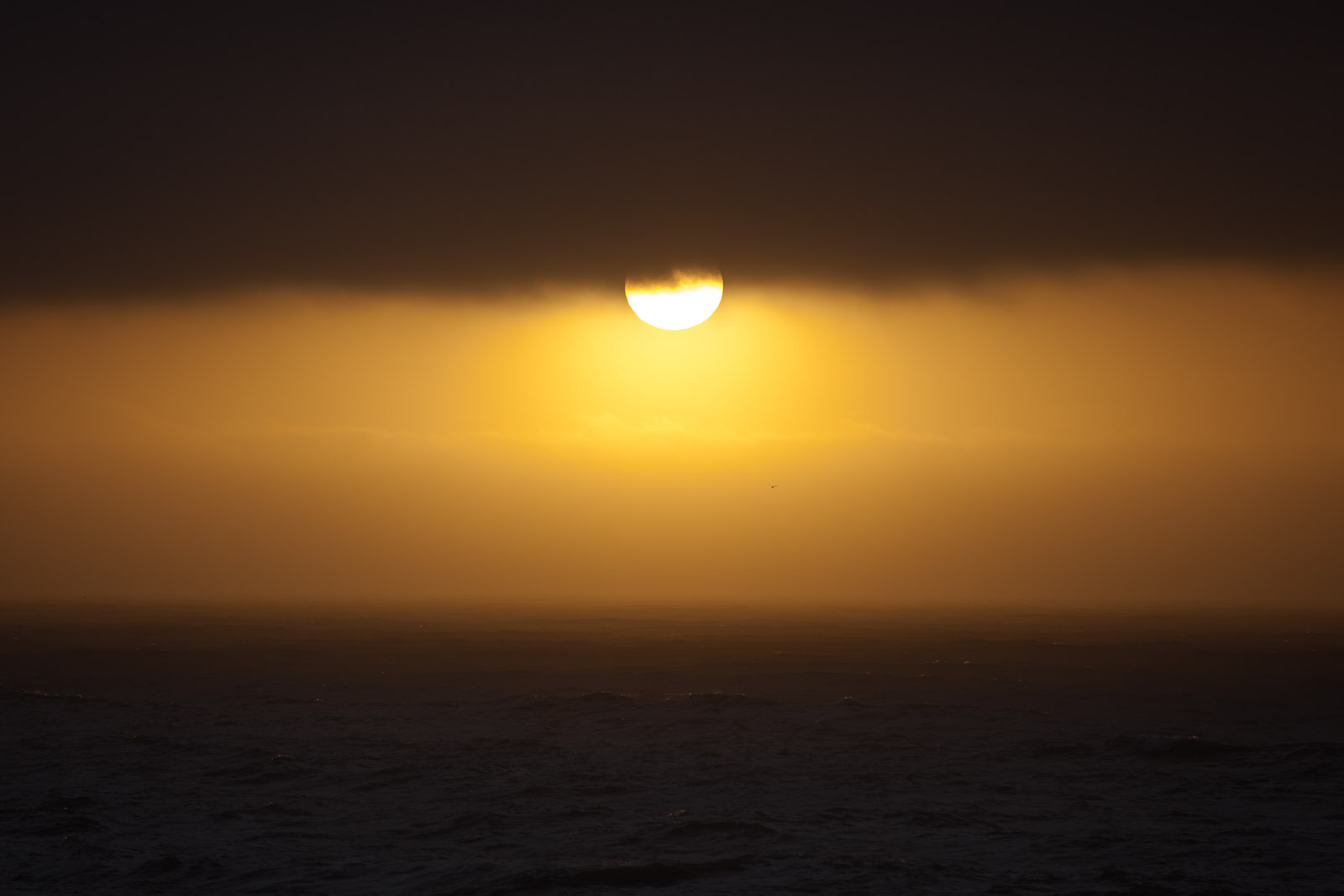 Sunset, Montara, California