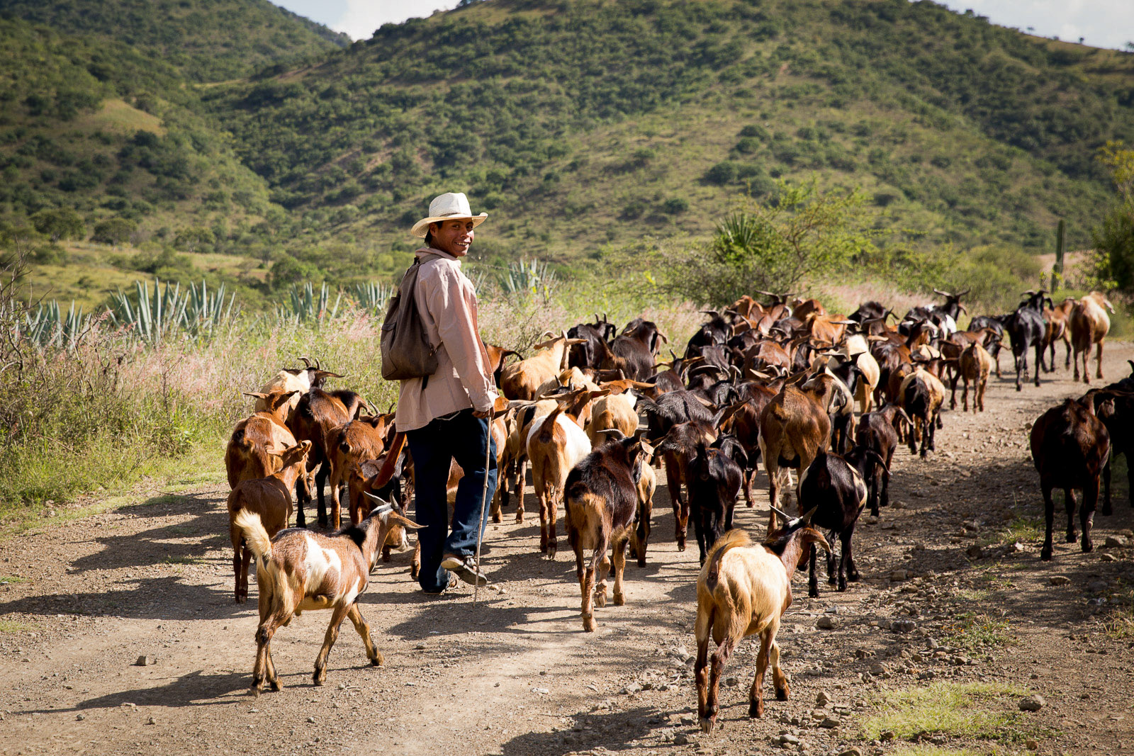 Goat Herder, San Baltazar, Oaxaca, Mexico