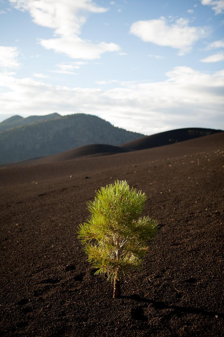 Sunset Crater, Arizona