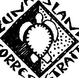 Zuna Island Escape Logo (Sea Turtle)