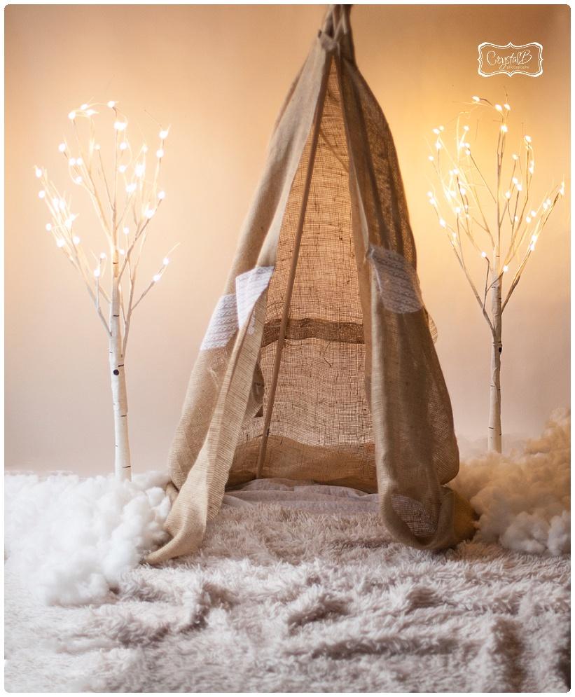 CrystalB Photography Winter Mini