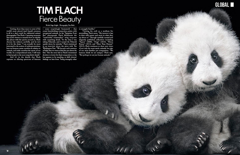 Tim Flach