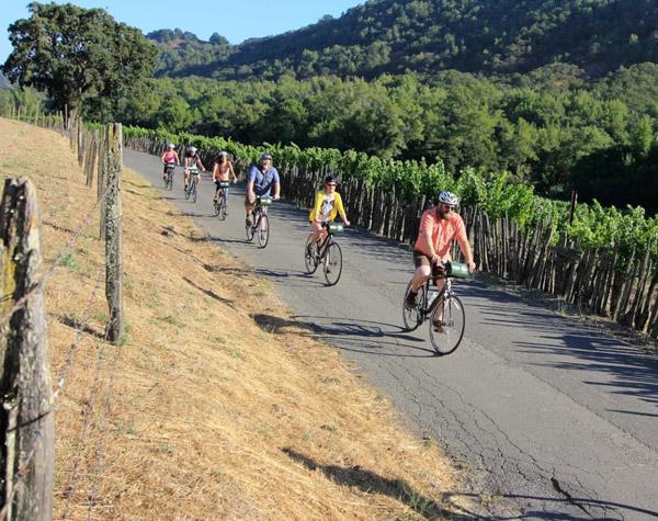 napa-sonoma-bike-tours-vineyards-teambuilding