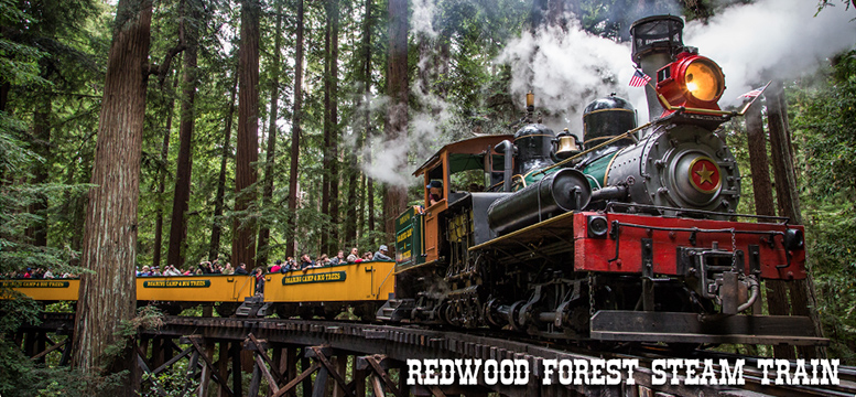 roaring camp railroads venue and team building.jpg