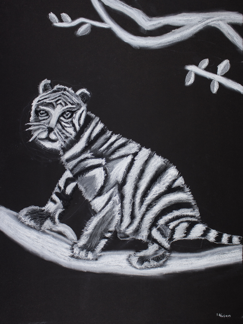Tiger Cub on a Branch, 2017, pastel on paper, 46x62cm
