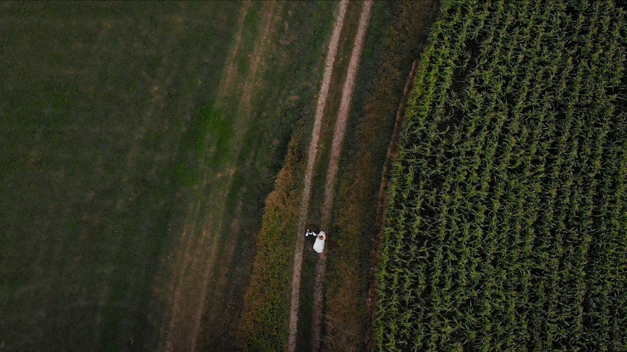 devon drone photography
