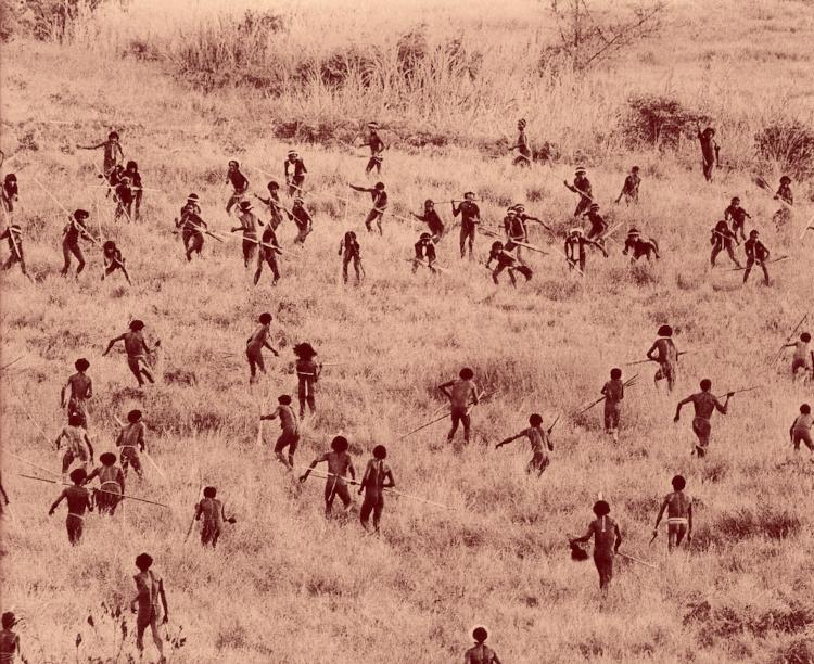 Guerre papoue. Document rare.