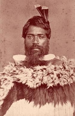 Boss Maori