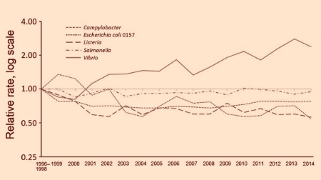 Relative rates of culture-confirmed infections with Campylobacter, STEC* O157, Listeria, Salmonella, Vibrio, and Yersinia compared with 1996–1998 rates, by year — Foodborne Diseases Active Surveillance Network, United States, 2006–2013†
