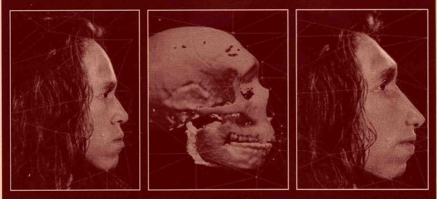 Néandertal numérisé