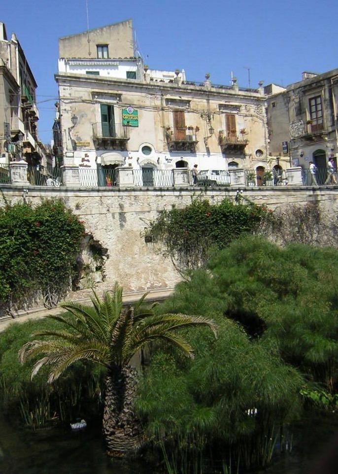 Souvenir de Sicile, avec un palmier qui surprend