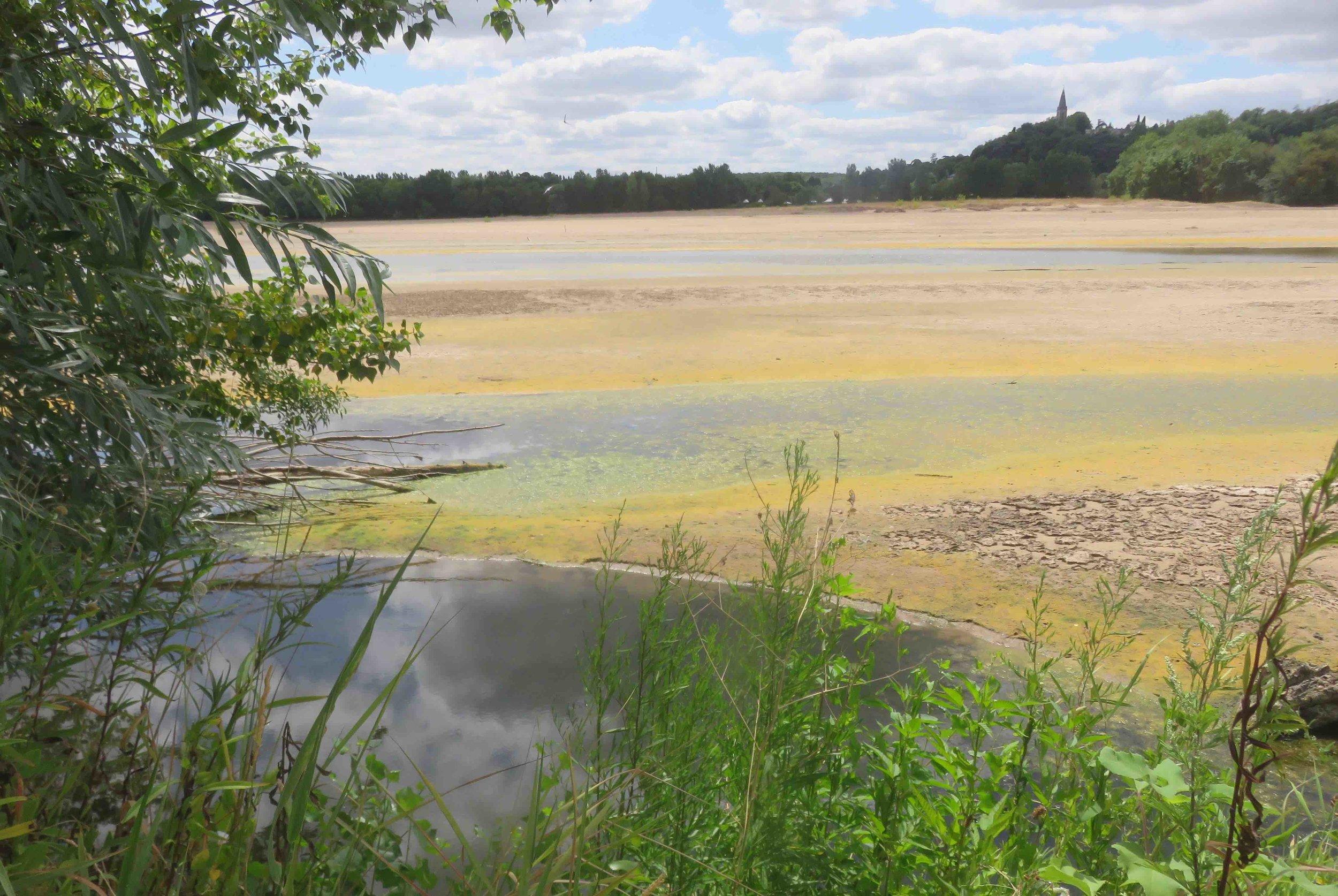 L'eau de la Loire a atteint cette année les trente degrés par endroits