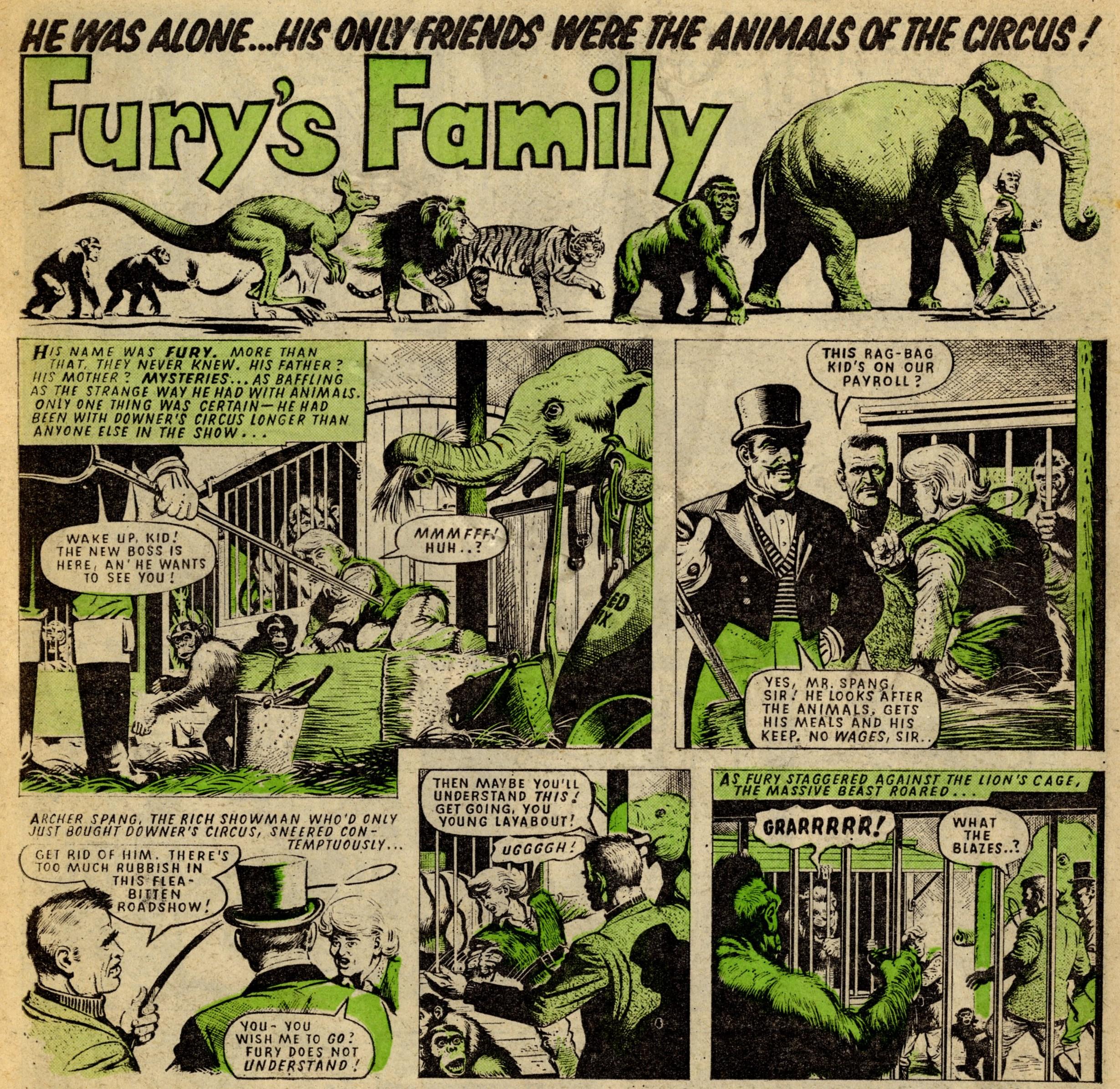 Fury's Family: Angus Allen (writer), Denis McLoughlin (artist)