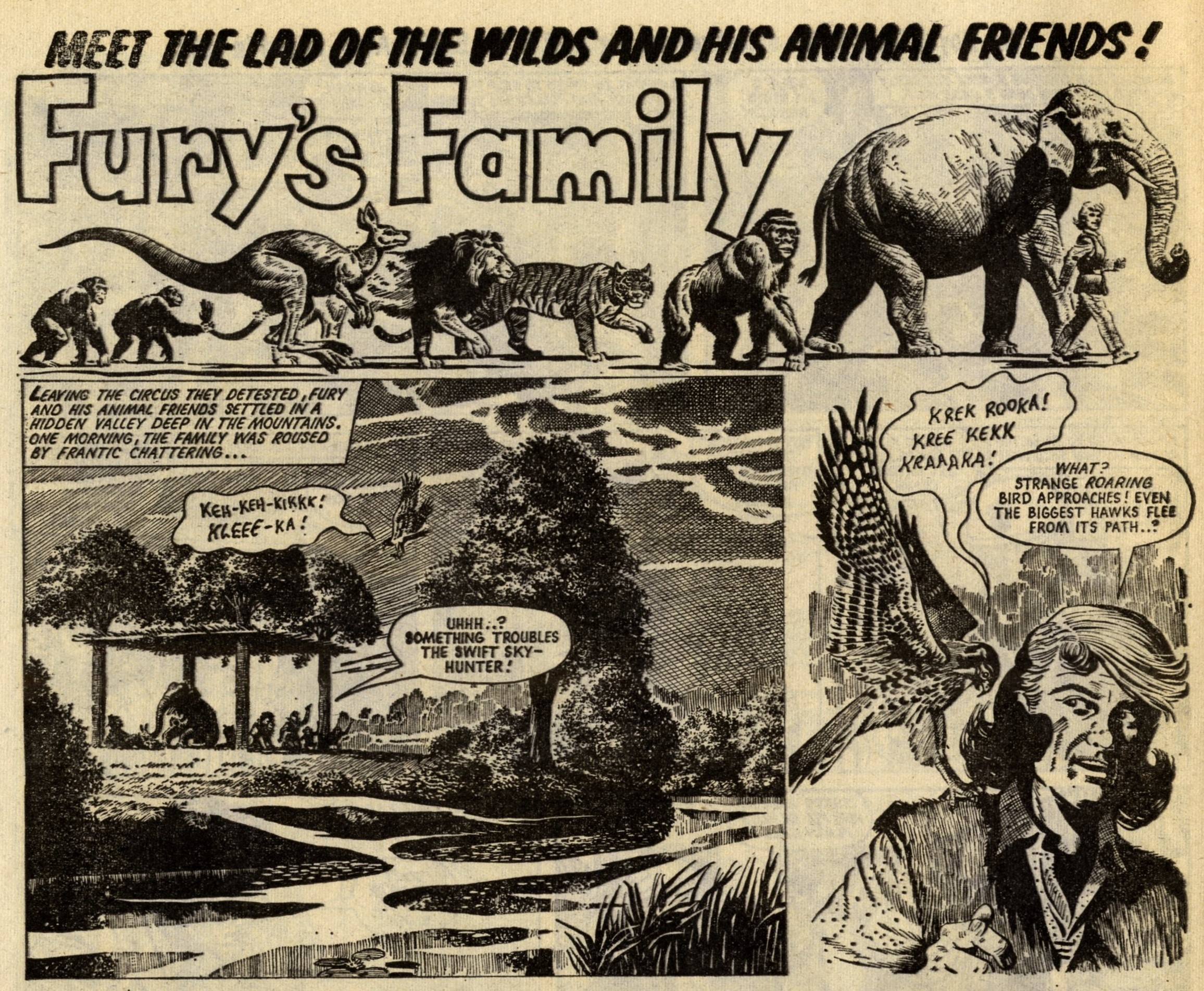 Fury's Family: Angus Allen (writer), Denis McLoughlin (artist)
