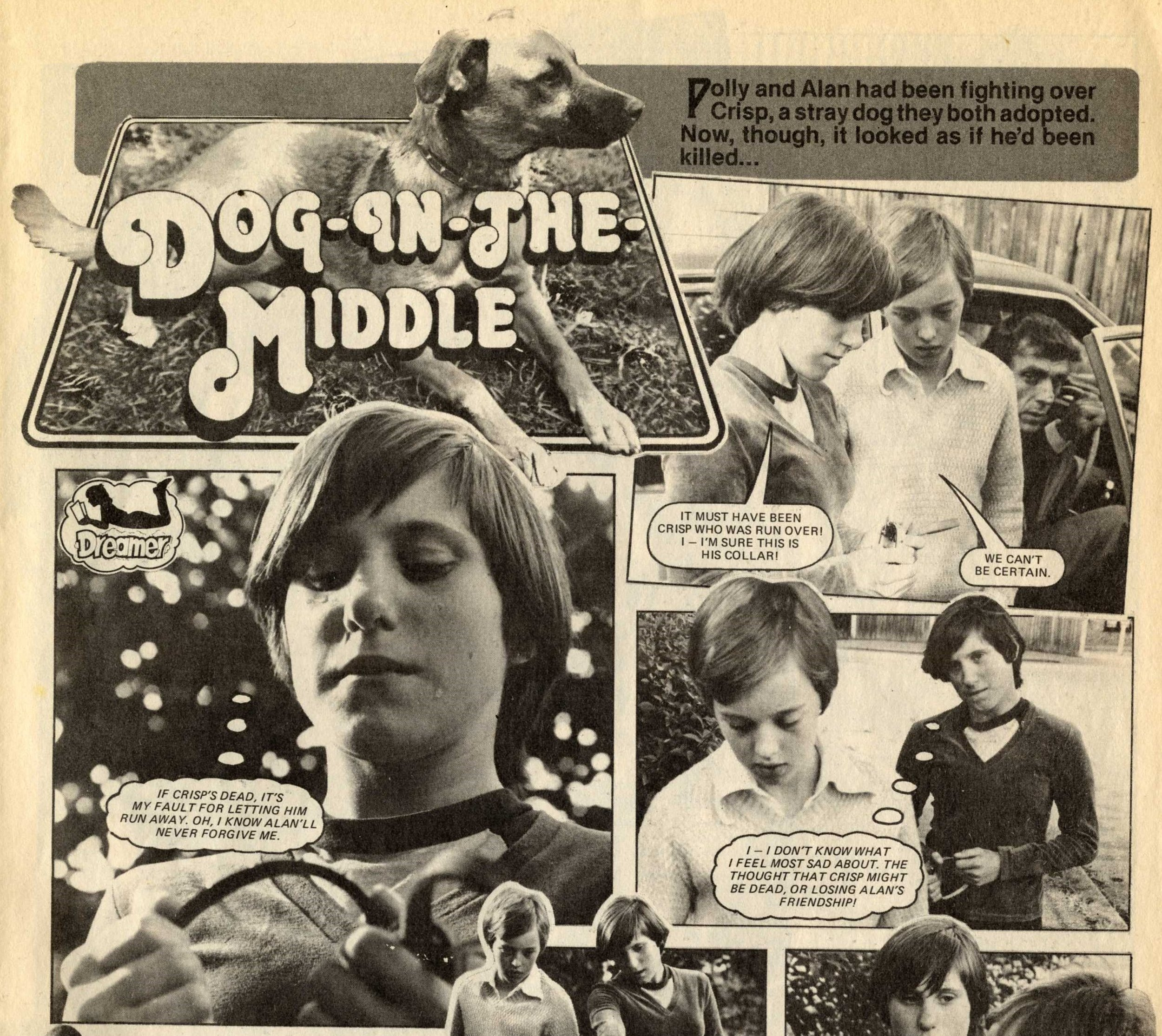 Dog-in-the-Middle (photo-story)
