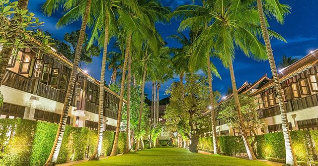 There is something very relaxing and beautiful about looking up to the night sky through palm trees 🌴 gently swaying in the sea breeze 🌊  This photos was captured at the beautiful Le Meridien Koh Samui Resort & Spa in Koh Samui, Thailand 🇹🇭