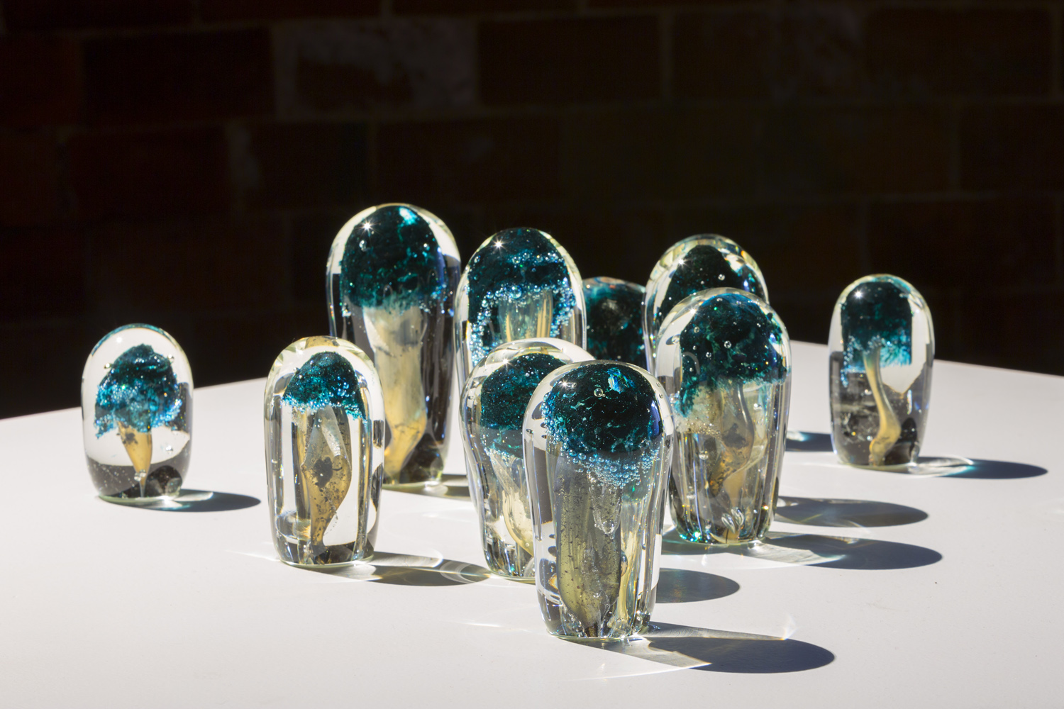 Collaboration with Emilie Patteson, Mushrooms, hot-sculpted glass with mushroom and copper inclusions, 2014, (photo by Adam McGrath), Canberra Glassworks GLINT exhibition install