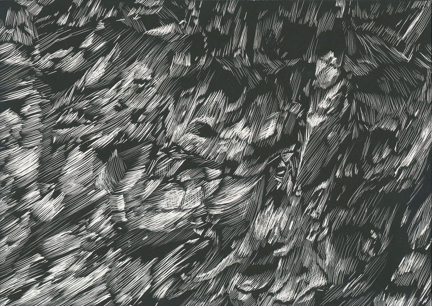 Canyon Variation (detail), scratchboard, dimensions variable, 2012