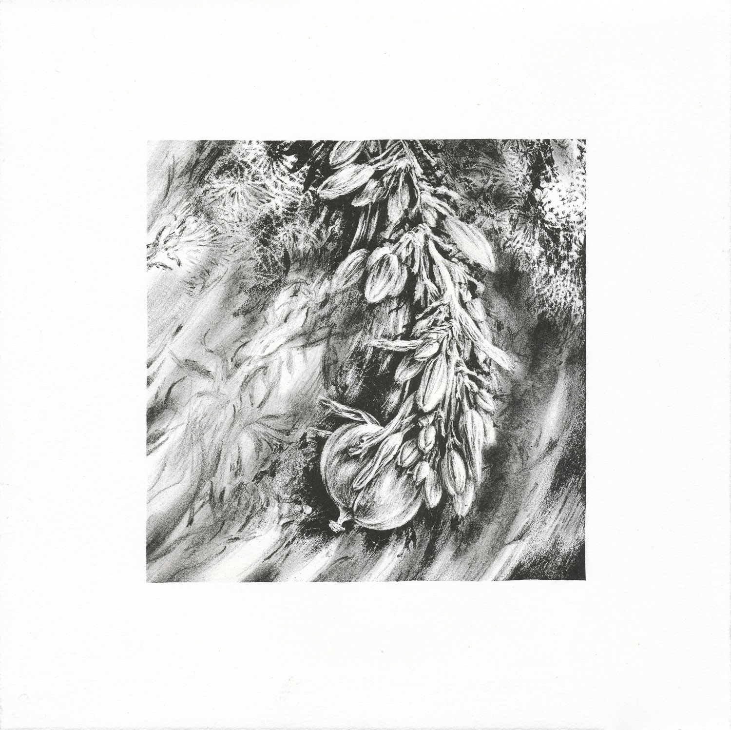 Sway, lithograph, 26 x 26 cm, edition of 8, 2012