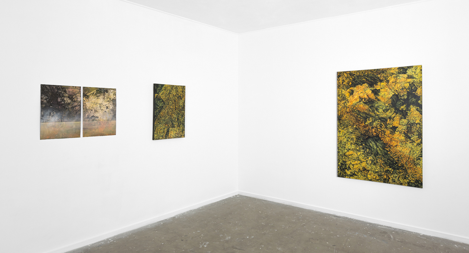 Luminous Earth (install), Canberra Contemporary Art Space Manuka, 2013 (photo by Dean Butters)