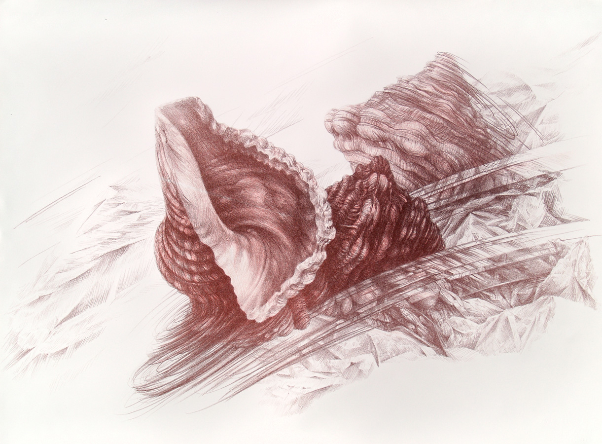 Drift, lithograph, 56 x 76 cm, edition of 8, 2011.