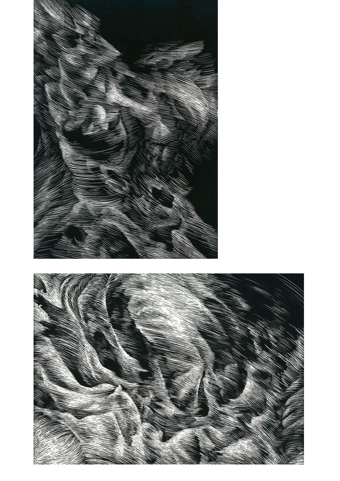 Skeleton, scratchboard, 2 panels (13cm  x 17.5cm each), 2011