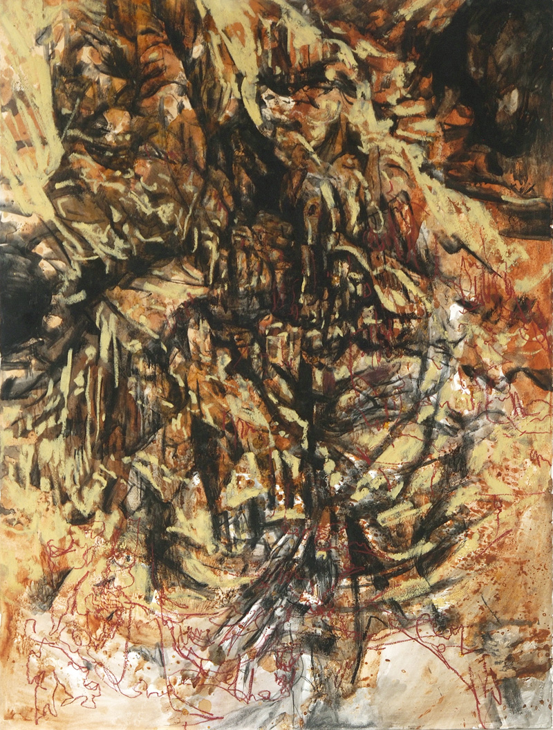 Golden Gully, 2015, charcoal, earth, oil stick, ink and shellac on paper, 76cm x 56cm