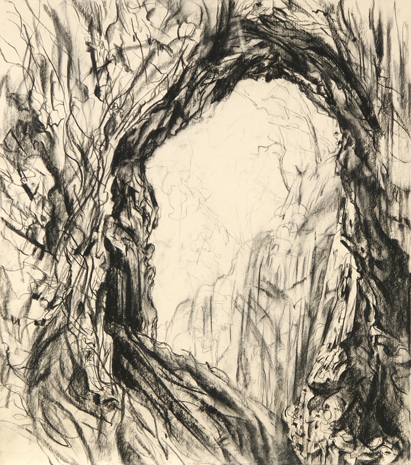 Golden Gully, 2015, charcoal on paper, 63cm x 56cm