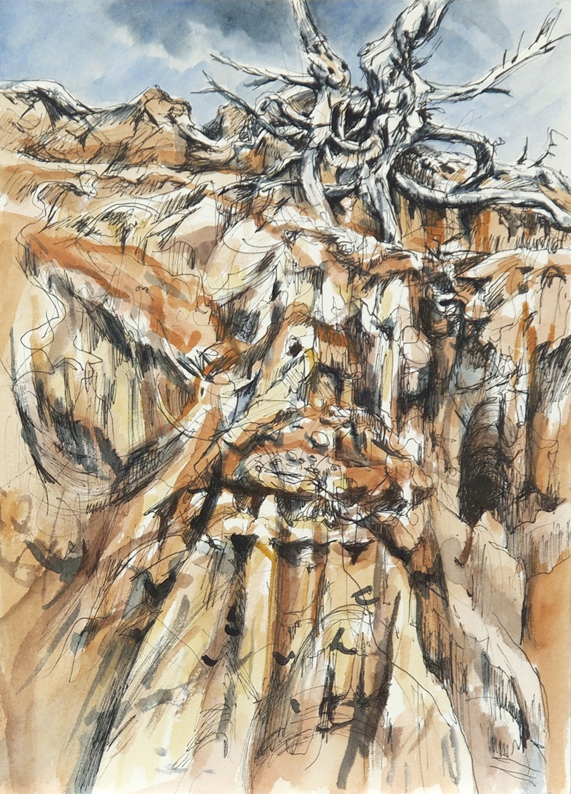 Study (Golden Gully), 2015, watercolour and pen on paper, 25cm x 18cm