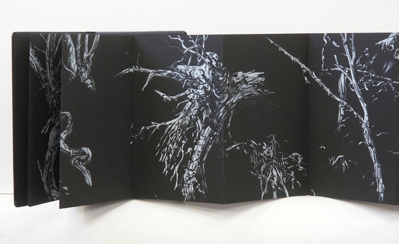 Fallen Sentinels (detail), 2015, pencil in concertina book, 21cm x 221cm